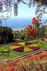 The Botanical Gardens overlooking Funchal
