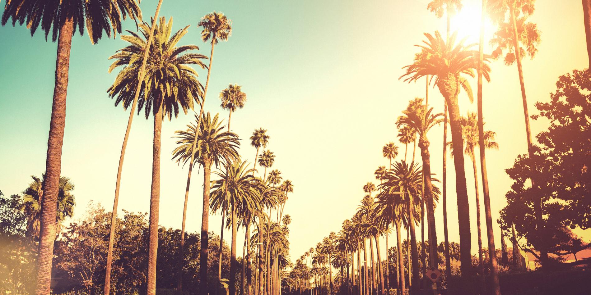 Explore Los Angeles Skyline