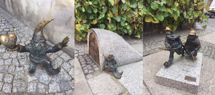 Gnomes in Wroclaw