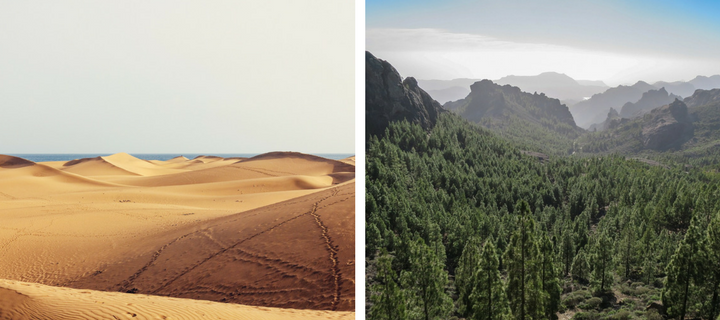 Sand dune and mountain scenery in Gran Canaria