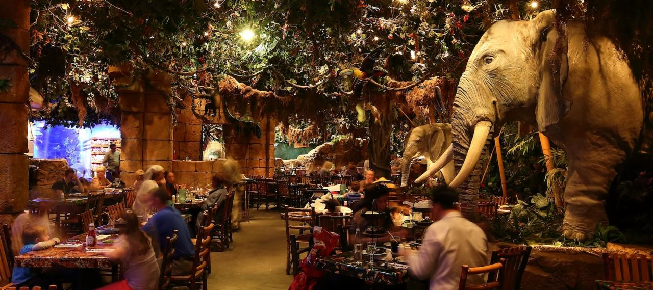 Rainforest Cafe In Disneyland Paris Your Guide To