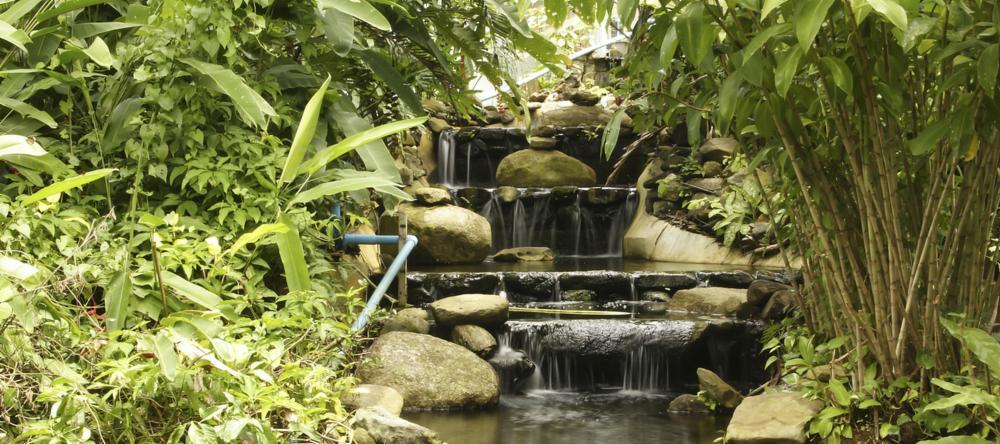 Waterfall in Khao Phra Thaeo National Park, Phuket, Thailand