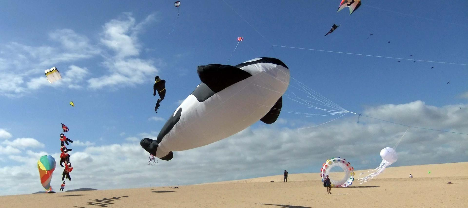 Fuerteventura Kite Festival | Your Guide to Fuerteventura