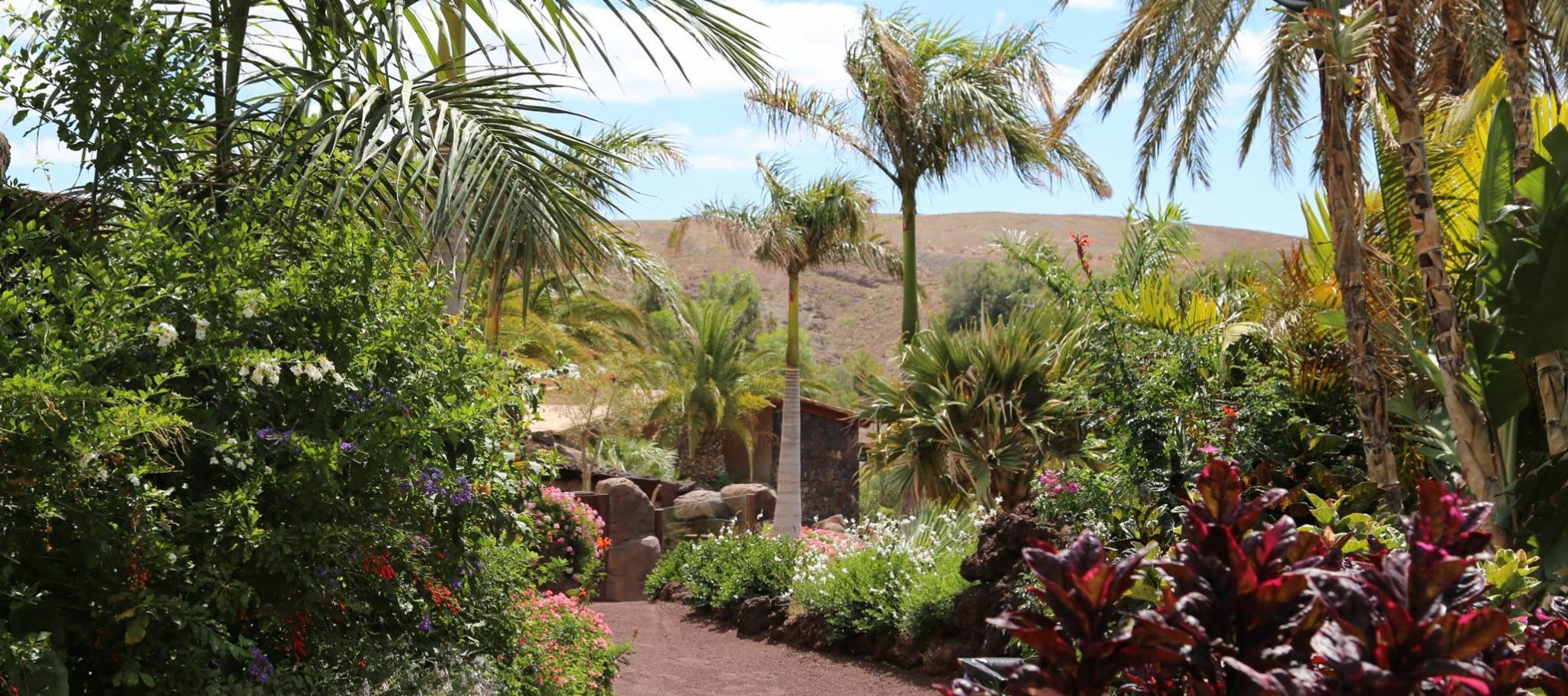 Oasis Park in Fuerteventura | Your Guide to Fuerteventura