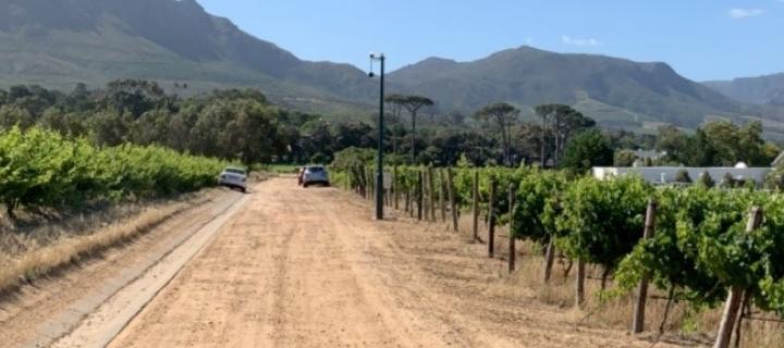 View of walking through the vineyard