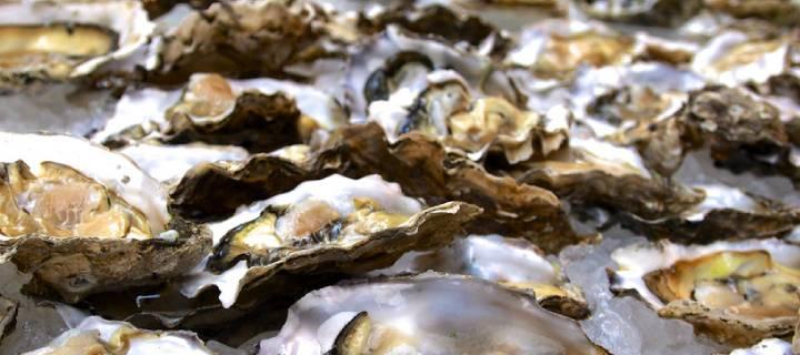 Oysters at Marche des Quais in Bordeaux