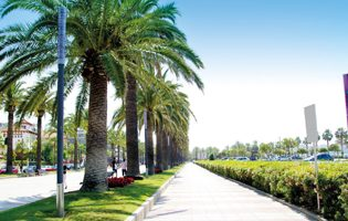 4* Holidays To Salou - Salou Town Package Holidays